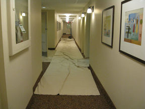 Photo of placed drop sheets and tarps to insure hallway protection when removing an Oil Tank